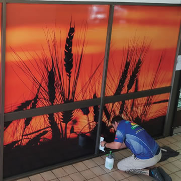 Wall and Window Graphics